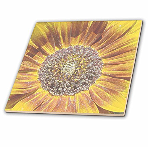 3dRose ct_32606_1 Crystal Colored Sunflower Art Flowers Designs Inspired by Nature-Ceramic Tile, - Ceramic Tile U 4 Floors