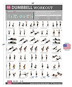 Dumbbell Workout Exercise Poster LAMINATED - Strength Training Exercises for Legs - Home Gyms - Personal Fitness Trainer - Total Body Workout - Resistance Training - Tone & Tighten Your Body by Fitwirr