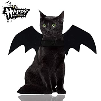 Amazon.com: Malier Deals Disfraz de Halloween para gatos ...