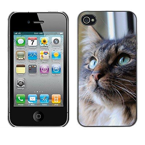 Premio Sottile Slim Cassa Custodia Case Cover Shell // F00007404 chat // Apple iPhone 4 4S 4G