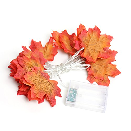 CShopping Fall Maple Leaves Garland, LED Harvest Lights Decoration for Thanksgiving Christmas festival Decorations | 6.6 Feet | 20 Lights (1 Pack) by CShopping
