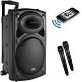 Frisby FS-4050P Portable Rechargeable Bluetooth Karaoke Party Machine PA Speaker System w/ Telescoping Handle and Wheels and 2 Wireless Microphones Echo and AM/FM Radio and USB and SD Slots