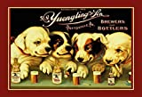 Bidesign Yuengling & Son Ale and Beer Dogs Metal