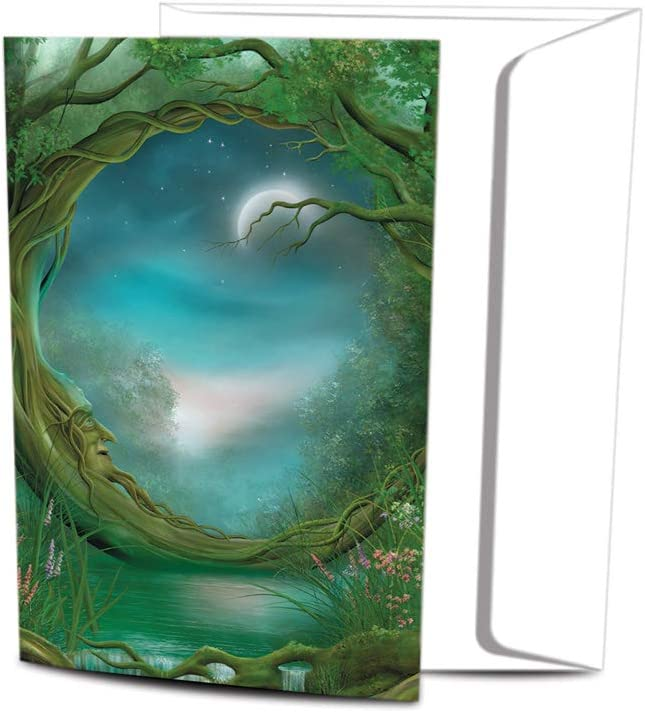 Tree-Free Greetings EcoNotes Stationary- Blank Note Cards with Envelopes, 4