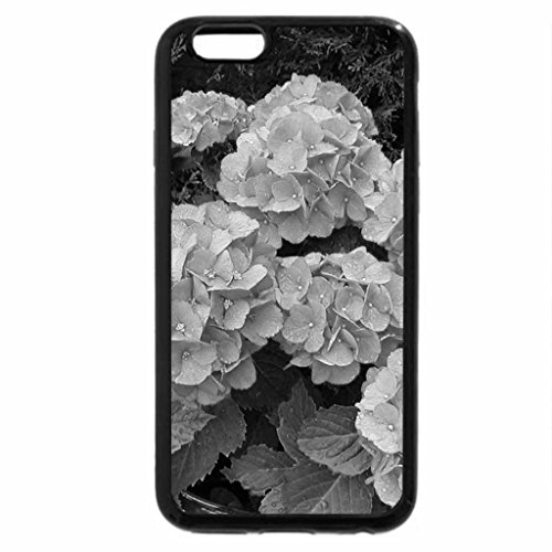 iPhone 6S Case, iPhone 6 Case (Black & White) - Million Flowers in Pink