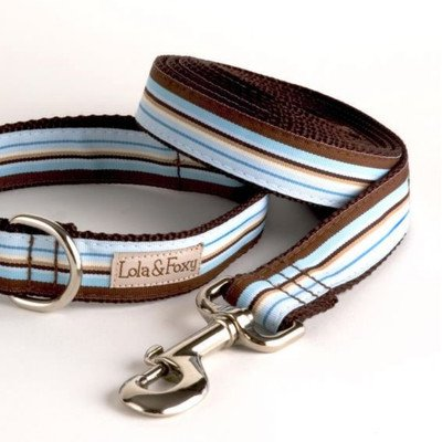 "Foxy Stripe Dog Lead Size: 1"" W x 60"" L"