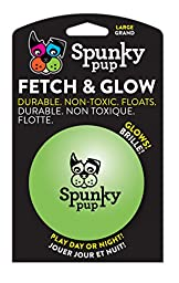 Spunky Pup Fetch and Glow Ball - Large [Colors Vary]