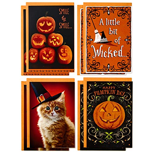 Hallmark Halloween Cards Assortment, Wicked Cat and Pumpkins (8 Cards with -