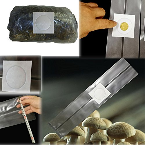 Amazing-us All in One Mushroom Grow Bag/Farm-Mushroom Spawn/Sealable Spawn/Myco Bags,Large size 8'' X 5'' X 19'',0.2 Micron filter, 3 Mil Polypropylene,for Substrate Autoclavable Presealable (10) by Amazing-us
