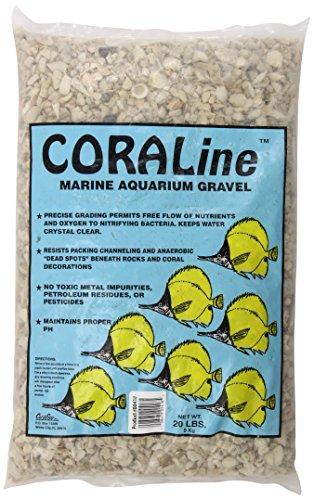- Carib Sea ACS00418 Aruba Shell for Aquarium, 18-Pound Bag