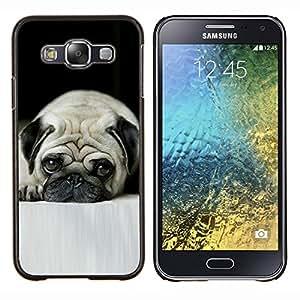 YiPhone /// Prima de resorte delgada de la cubierta del caso de Shell Armor - Pug Arrugas Sad Sad Pequeño Pelo Corto Perro - Samsung Galaxy E5 E500