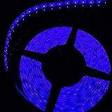 Kasstino DC 12V 16.4 Ft 600 Leds 5M 3528 SMD LED Decoration Strip Waterproof Strip Light (Blue)