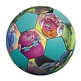 Hedstrom Dreamworks Jr Athletic Trolls PVC Soccer Ball Play Balls