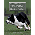 Barbara Sykes' Training Border Collies