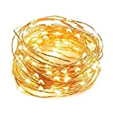 Fairy Lights 100 Micro LED Indoor Outdoor ChristmasFairy Lights String Lights 10m/33 Ft Copper Cable - Mains Operated LED Fairy Lights - Ideal for Christmas Tree Festive Party Decora