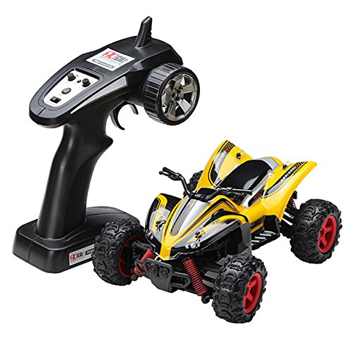 10 Electric 4wd Truck (FSTgo RC Cars High Speed Truck 32MPH 1/24 Scale 4WD Off Road Truck 2.4G Radio Remote Control Hobby Car)