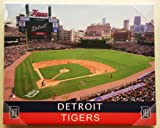 Detroit Tigers MLB H/A Tigers Stadium 16x20 Artissimo Canvas Art