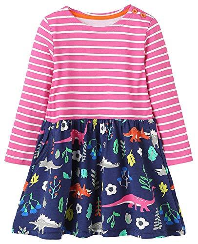 - lymanchi Little Girls Casual Dinosaur Dress Long Sleeve Cotton Cute Tunic Shirt E 2-3T