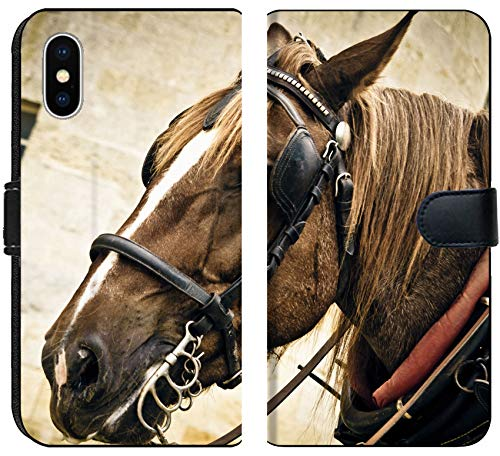 (Apple iPhone X Flip Fabric Wallet Case Horse Muzzle in The Harness Image 34451954 Customized Tablemats Stain Resistance Collec )