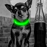 Clan_X Led Dog Collar, USB Rechargeable light up Dog Collar, Flashing Collar with Reflective Stitches Make Your Pets Visible & Safe, Adjustable Size for Small Dogs & Cats(Green)