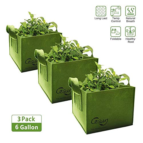 (Cesun Square Grow Planter Bag Premium 400 Gram Thickened Fabric Smart Pots 6 Gallon Aeration Fabric Cube with X Stitching Reinforced Handles (6 Gal Green Cube))