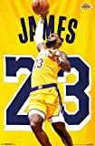 """Trends International Los Angeles Lakers-Lebron James Action Wall Poster, 22.375"""" x 34"""", Multi"""