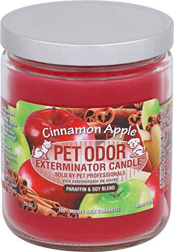 Pet Odor Exterminator Candle, Cinnamon Apple, 13 oz -