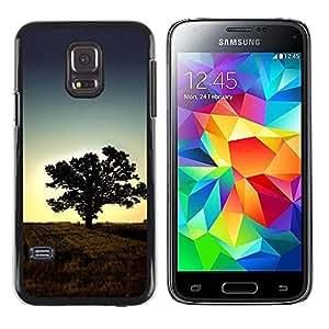 "For Samsung Galaxy S5 Mini ( NOT for regular S5 ) , S-type Puesta de sol Beautiful Nature 1"" - Arte & diseño plástico duro Fundas Cover Cubre Hard Case Cover"