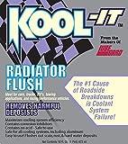 Lubegard 95020 Kool-It Radiator Flush, 16