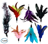 Cat Feathers - Best Reviews Guide