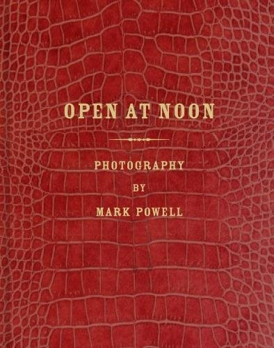 Download Mark Alor Powell: Open at Noon ebook