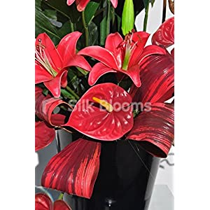 Beautiful Red Stargazer Lily and Anthurium Floral Table Arrangement 4