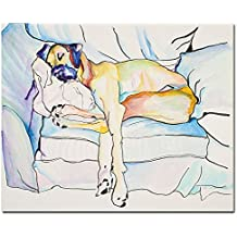 Sleeping Beauty by Pat Saunders-White, 14x19-Inch Canvas Wall Art