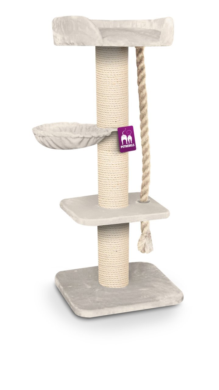 petrebels Arbre à chat Maine Coon Rebel 173 cm haut dans Royal Races de  gros chat Cream. XXL Arbre à chat très stable pour de.  Amazon.fr   Animalerie 283e90bd9014