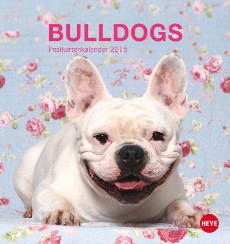 bulldogs-postkartenkalender-2015
