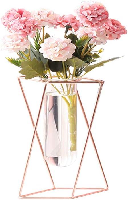 Aoderun Glass Flower Vase with Metal Stand Modern Geometry Desktop Glass Planter Indoor Hydroponics Plants for Home Office Garden Wedding Decor (Rose Gold, M)
