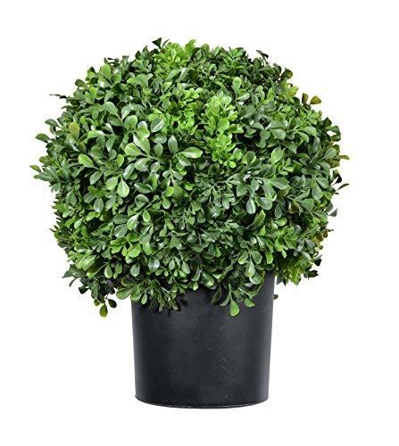DE Pre-Potted 16 Inches High Ball Shaped Boxwood Topiary- 14 Inch Diameter - Plastic Pot by DE
