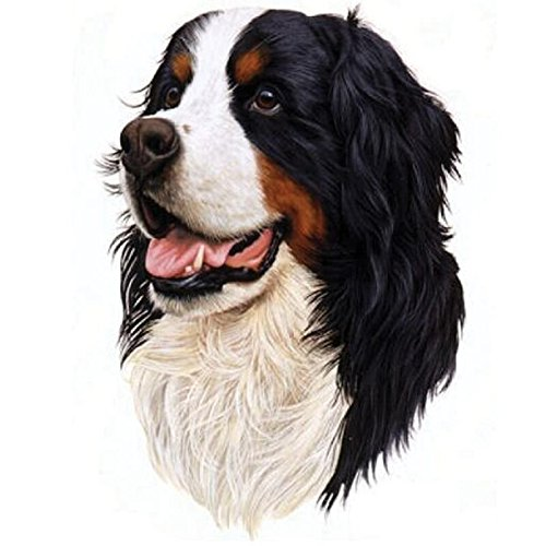 24x34cm Mosaic Full Laid Diamond Painting Embroidery Puppy Bernese Mountain Dog 5D Diamond Painting Dog Cross Stitch Handwork Animal Kits