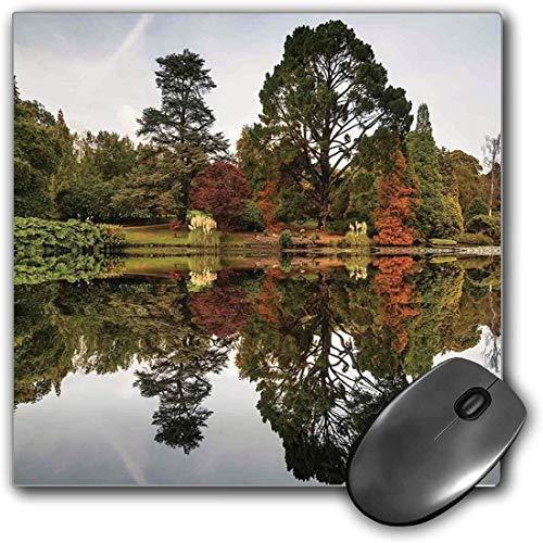 Mouse Pad Gaming Funcional Decoracion de la cabana Alfombrilla de raton gruesa impermeable para escritorio El exuberante bosque de otono consiste en diferentes tipos de arboles que se reflejan en un l
