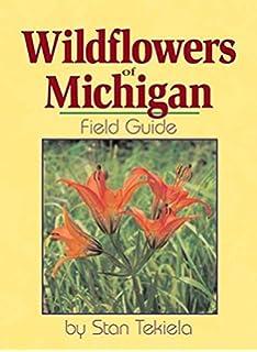 Birds of michigan field guide bird identification guides stan wildflowers of michigan field guide wildflower identification guides publicscrutiny Gallery