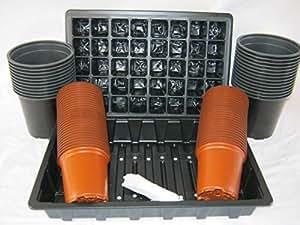 The Flowerpot Men Kit de iniciación de semillas (semilleros, inserciones y macetas de 1 litro y 9 cm)