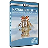 Nature: Animal Misfits by PBS HOME VIDEO