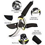 """8"""" Professional Garden Clippers,Hand Pruners with Ergonomic Handles, Branch Scissors & Rose Pruning Shears,Shock-Absorbent Spring & Safety Lock,Bypass Pruning Shears for Garden Maintenance (Black)"""