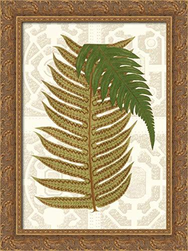 Garden Ferns II 18x24 Gold Ornate Wood Framed Canvas Art by Vision Studio (Garden Fern Wood)