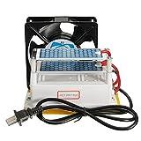 AC110V 10Mg/H Heavy Duty Ozone Generator DIY with Blue Plates Treatment