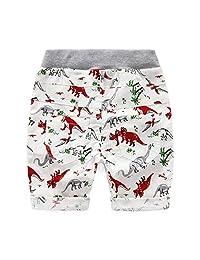 Lanhui Baby Boys Dinosaur Print Shorts Loose Beachwear Bottom Pants Cute Casual Cartoon Scanties