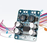 Generic 2016 NEW Sound quality Power Amplifier Board Mono Digital Amplifier Module Audio Power Amplifier60W Power AMP DC 8-24V