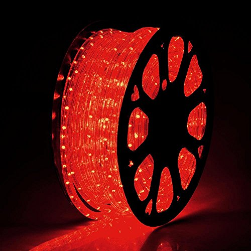 Yescom 2x150ft Red 2 Wire LED Rope Light Indoor Outdoor Home Holiday Valentines Party Restaurant Cafe Decor by g (Image #3)