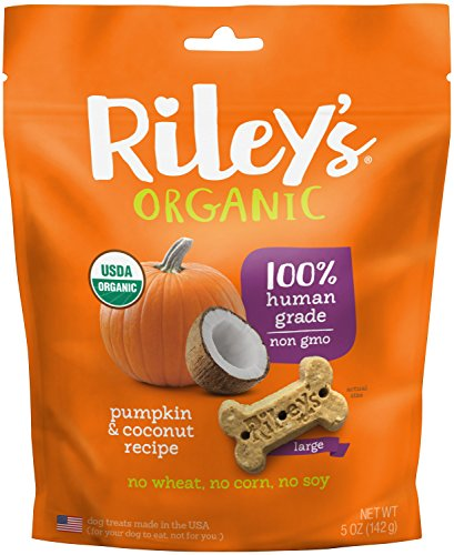 Riley's Organics Pumpkin and Coconut Bone, Large, 5 Oz.