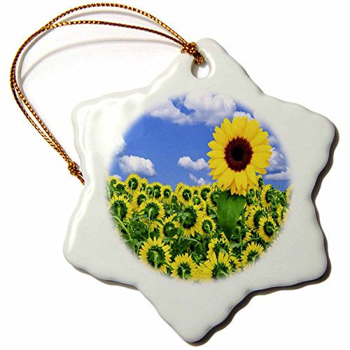 3dRose orn_56879_1 1 Sunflower Rebels